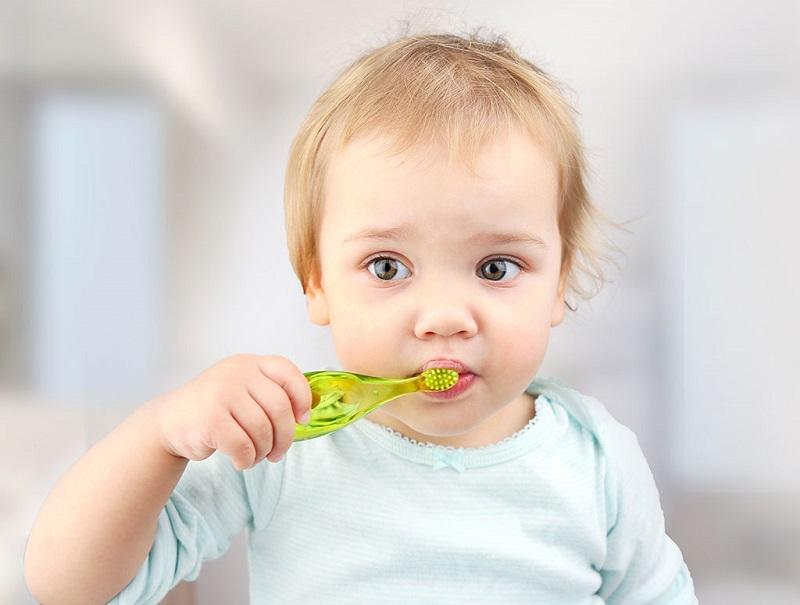 Bố mẹ nên vệ sinh sạch sẽ khoang miệng cho bé sau mỗi bữa ăn để hỗ trợ răng mọc nhanh hơn