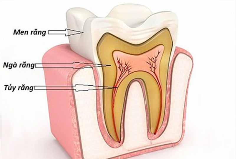Các bác sĩ sẽ dựa vào mức độ tổn thương để phân biệt các cấp độ sâu răng