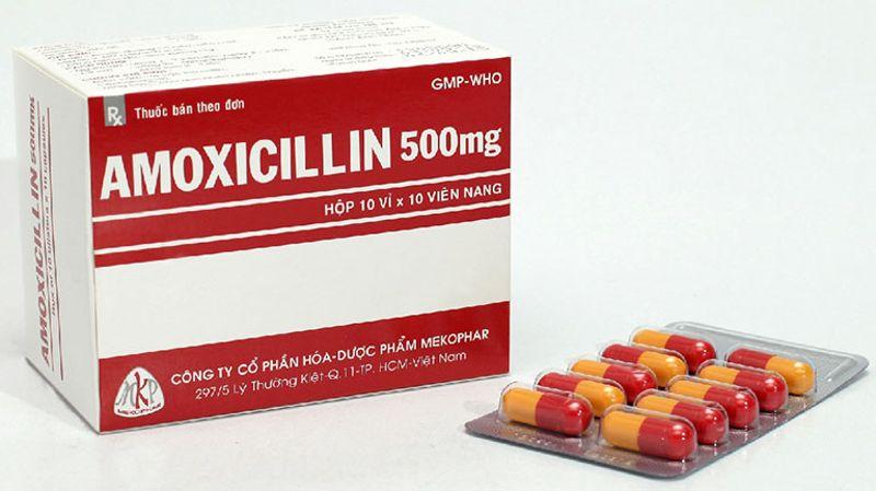 Amoxicillin là một trong những loại thuốc chữa viêm lợi tốt nhất