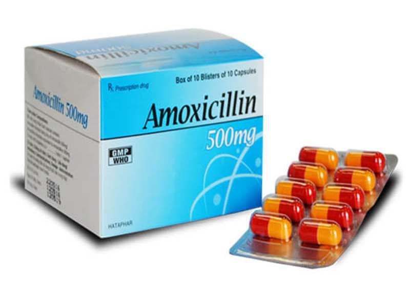 Amoxicillin giúp ngăn chặn sự phát triển của vi khuẩn gây viêm lợi hôi miệng.