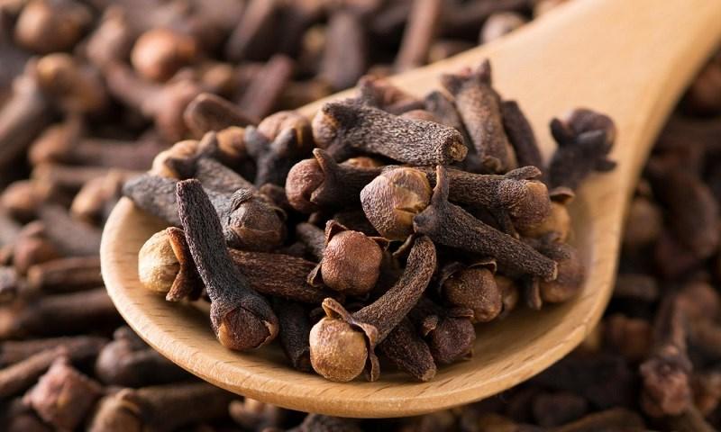 Đinh hương giúp kháng khuẩn và giảm viêm hiệu quả
